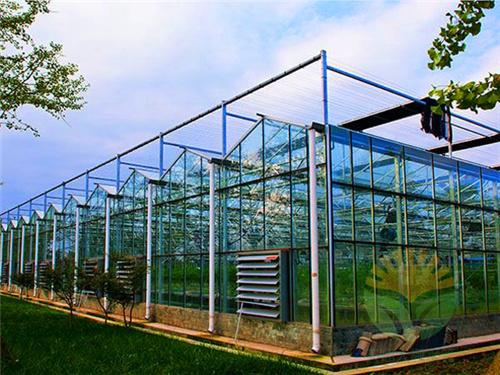 玻璃温室竞技宝官网建造