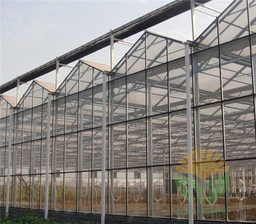 玻璃温室竞技宝官网建设
